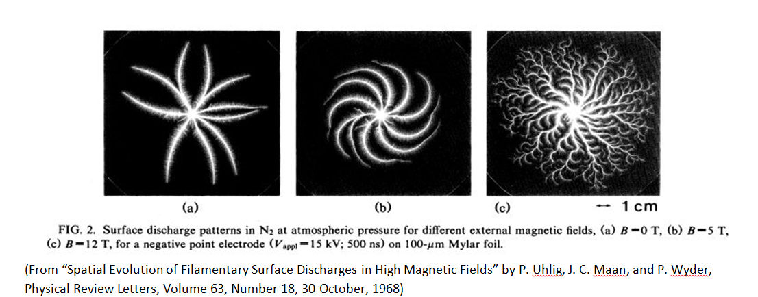 Magnetic field effect on Lichtenberg Figures